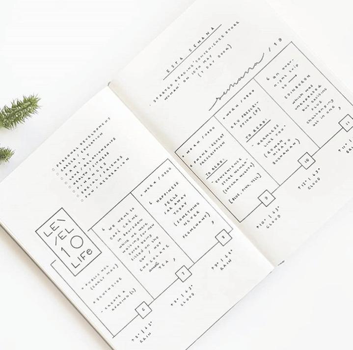 organized bullet journal planner