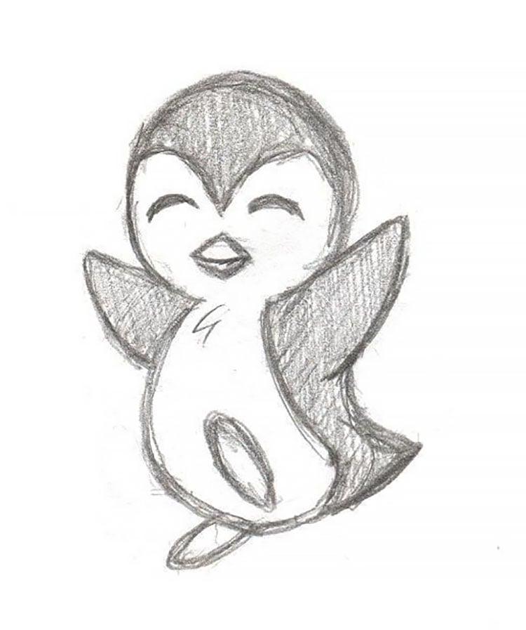 penguin animal sketch
