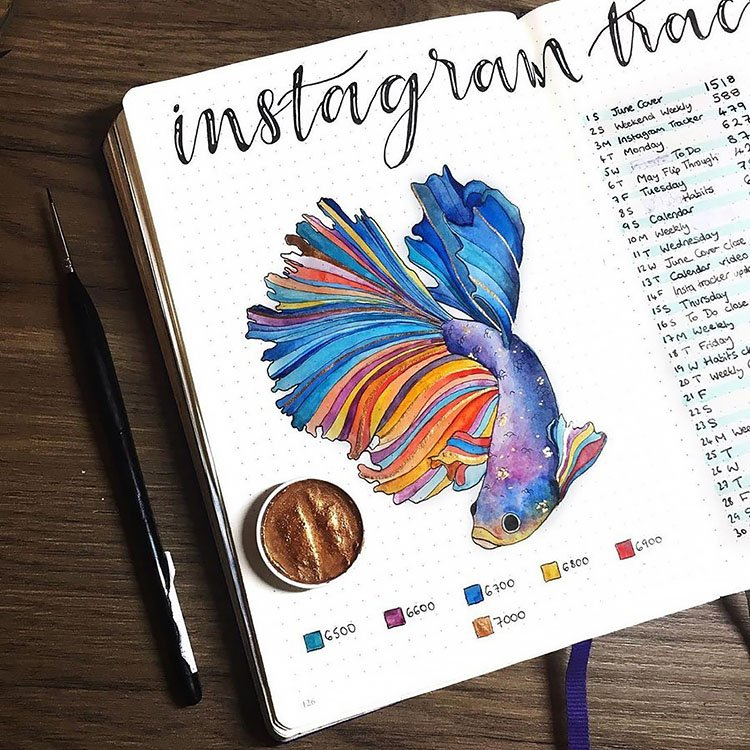 instagram fish tracker
