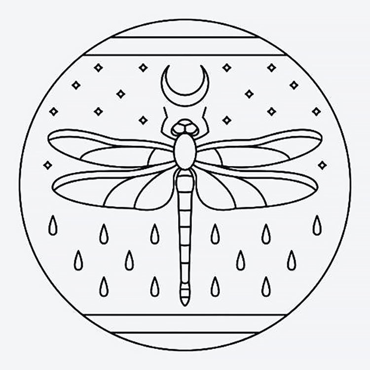 dragonfly with moon
