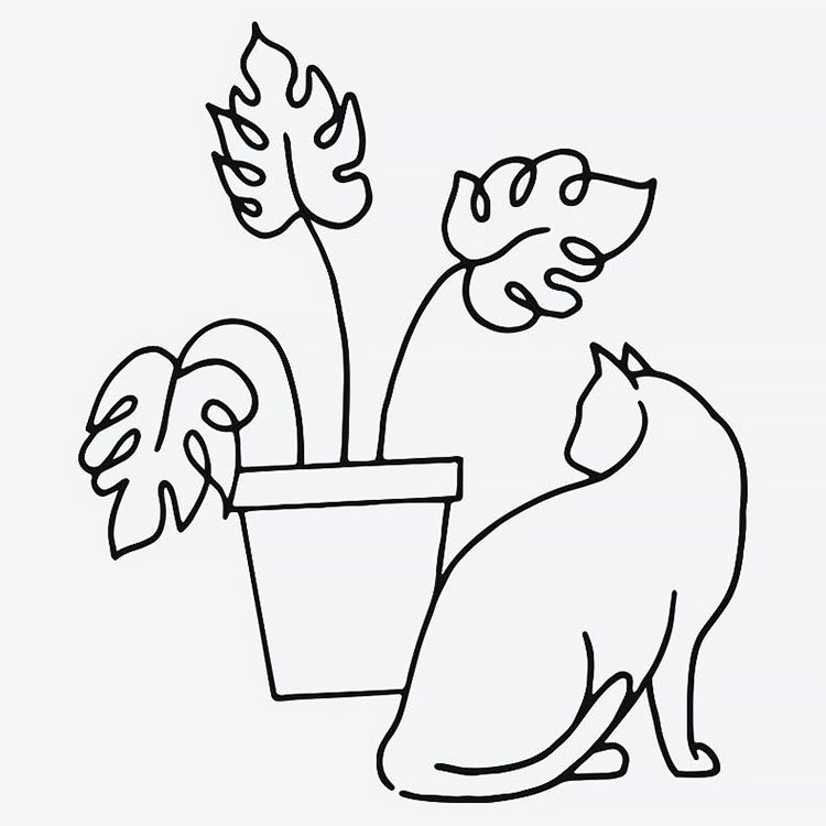 cat with plant easy drawing
