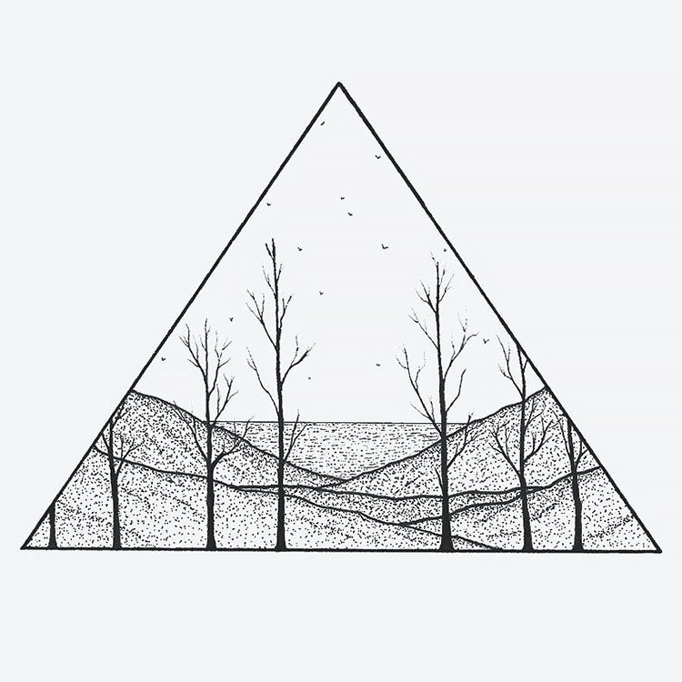 woods in triangle
