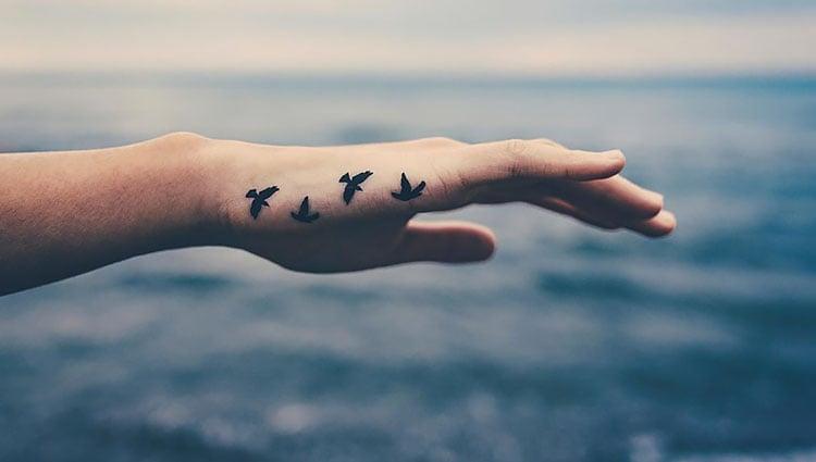 birds on hand