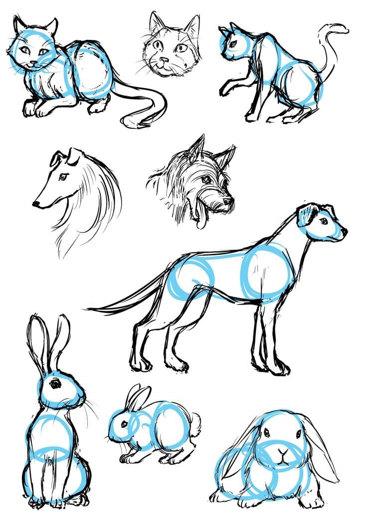 dog and bunny sketch