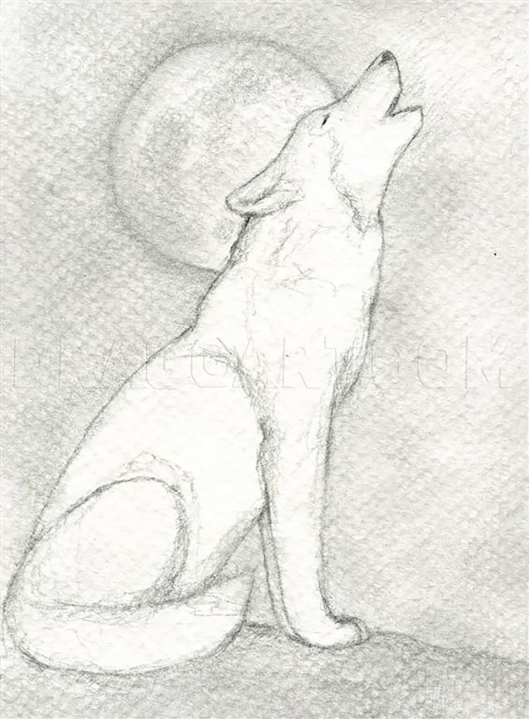 wolf howling at moon drawing