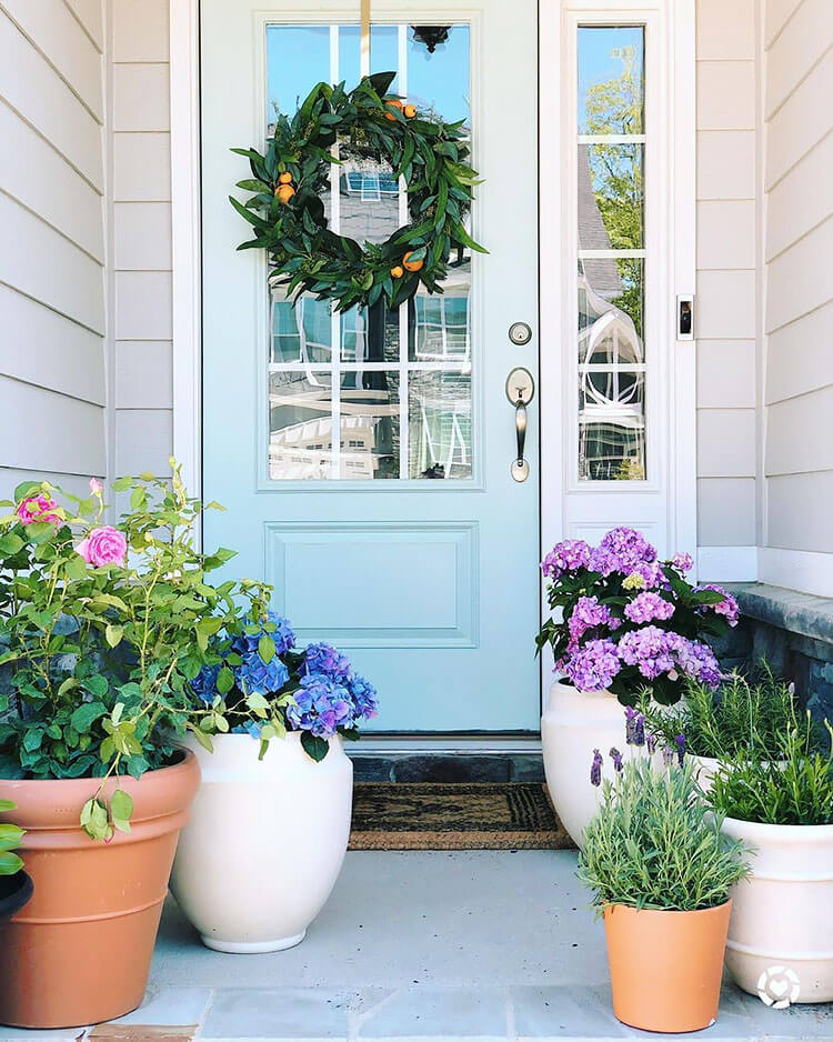 potted flowers in small space