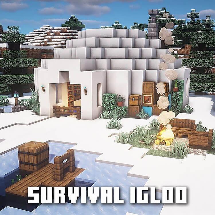 survival igloo