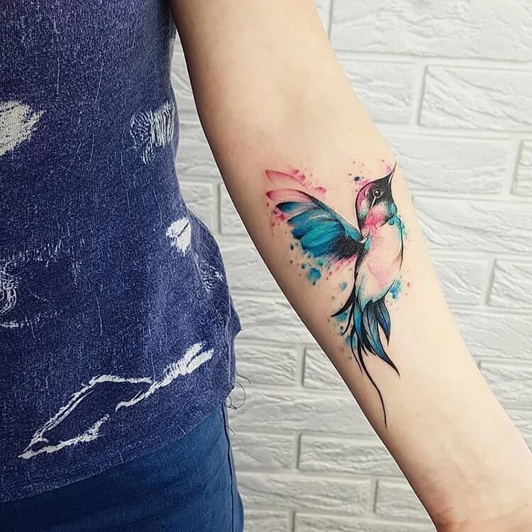 humingbird colorful