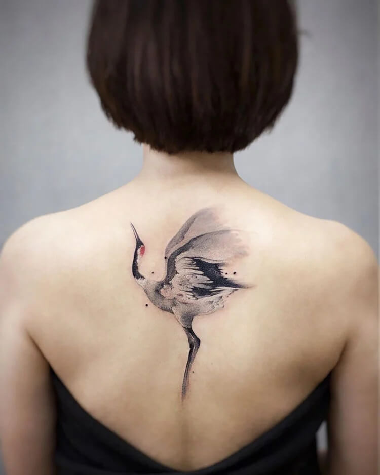 swan on back