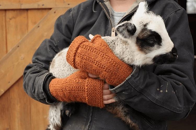 fingerless gloves for farmers